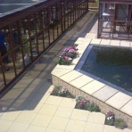 Our Cattery & Koi Pond